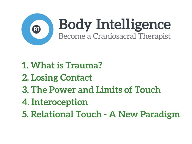 Webinar: Working with Trauma via Relational Touch 2019-10-29, Steve Haines